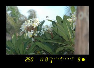 under2 exposure