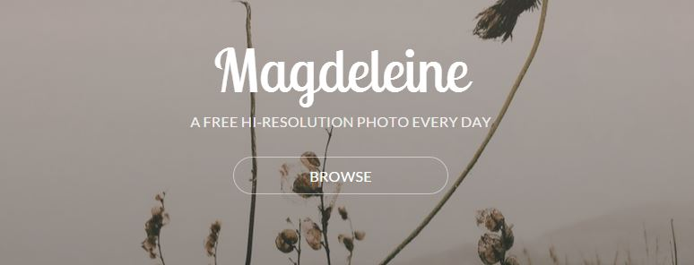 magdeleine stock photos
