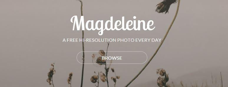 magdeleine stock photos