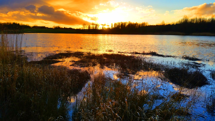 amberswood hindley at sunset by mike turner photography