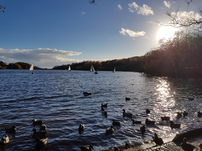 Jumbles Country Park Bolton by Mike Turner Photography