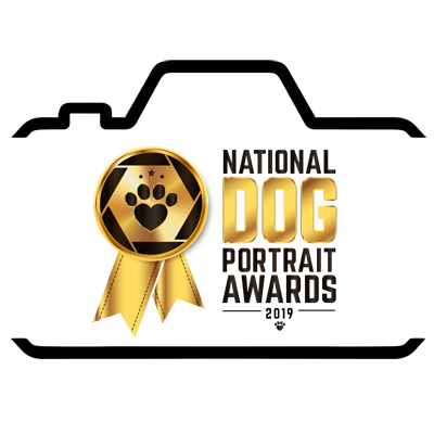 we are a participant in the dog portrait awards