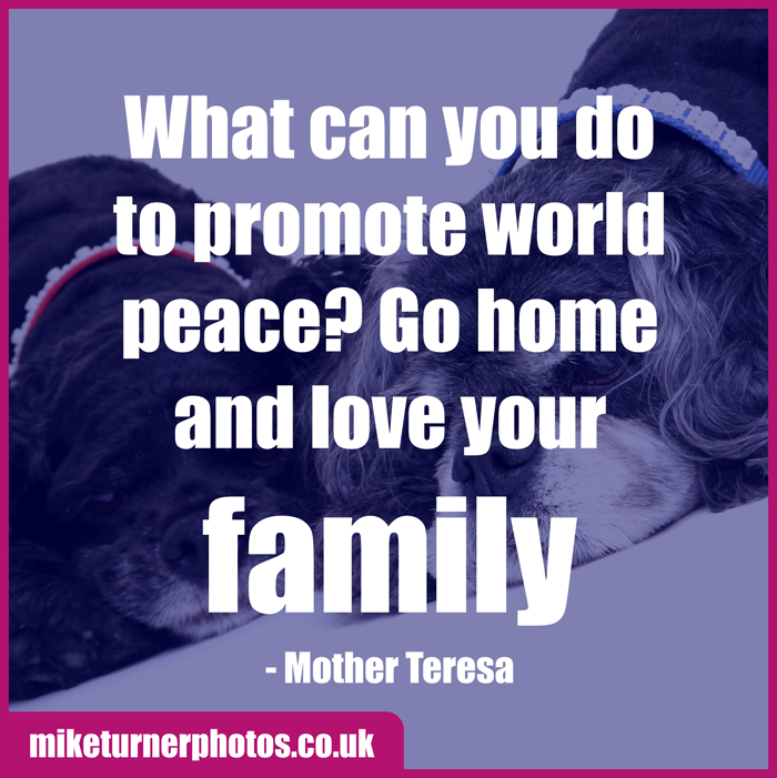 family to promote world peace