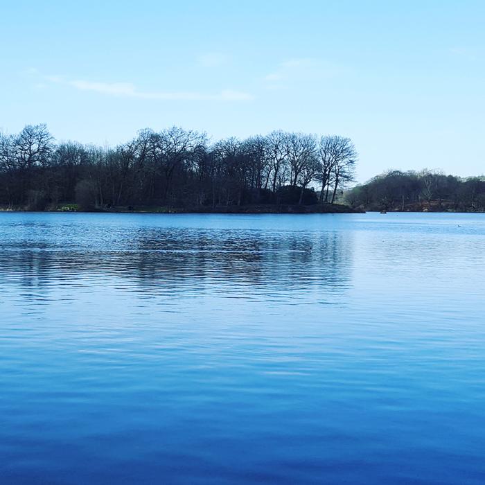 sankey valley park and carr mill reservoir photographs