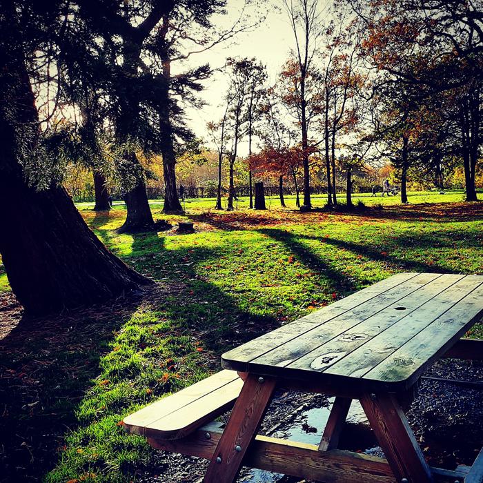 haigh hall woodland park